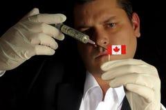 Junger Geschäftsmann gibt eine Finanzeinspritzung zur kanadischen Flagge stockfotografie