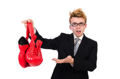 Junger Geschäftsmannboxer Lizenzfreie Stockfotos