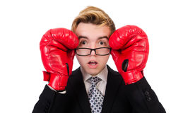 Junger Geschäftsmannboxer Stockfoto