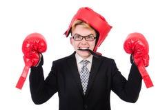 Junger Geschäftsmannboxer lokalisiert Lizenzfreies Stockfoto