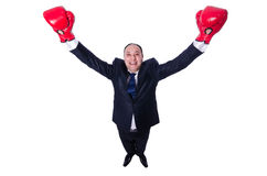 Junger Geschäftsmannboxer lokalisiert Stockfoto