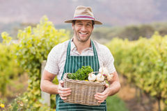 Junger glücklicher Landwirt, der einen Korb des Gemüses hält Stockfotos