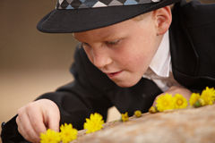 Junger Junge, der mit Blumen spielt Stockfotos