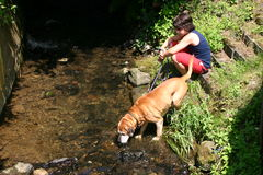 Junger Junge mit ihrem Hund lizenzfreies stockbild