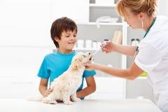 Junger Junge mit seinem Hund am Tierarzt Lizenzfreie Stockbilder