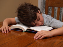 Junger Junge schlafend beim Lesen Lizenzfreies Stockfoto