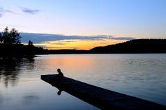 Junger Junge am Sonnenuntergang Stockbild