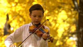 Junger Kerl, der die Violine im Herbstpark spielt stock footage