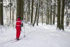 Junger Kerl fährt in einem schneebedeckter Waldaktiven Rest im Winter Ski Blau, Vorstand, Kostgänger, Einstieg, Übung, Extrem, Sp stockbild