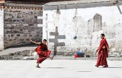 Junger Lamaspielfußball, Labuleng-Tempel lizenzfreie stockfotos