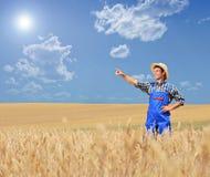Junger Landwirt, der auf einem Weizengebiet zeigt Stockbilder