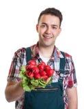 Junger Landwirt, der rote Rettiche zeigt Stockfotos