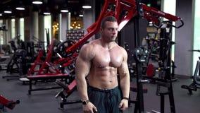 Junger männlicher Bodybuilder, der ein Training in der Turnhalle tut stock footage