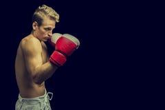 Junger männlicher Boxer auf einem dunklen Hintergrund stockbild