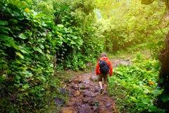 Junger männlicher Tourist, der auf der berühmten Kalalau-Spur entlang Küste Na Pali der Insel von Kauai wandert Stockbild