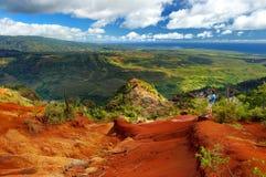 Junger männlicher Tourist, der die Ansicht in Waimea-Schlucht, Kauai, Hawaii genießt Stockfotografie