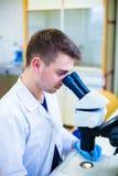 Junger männlicher Wissenschaftler mit einem Mikroskop seine Probe überprüfend Stockbild