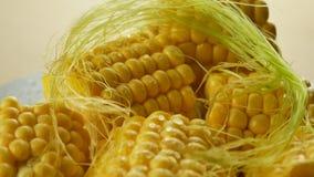 Junger Mais mit Wasser-Tropfen stock footage