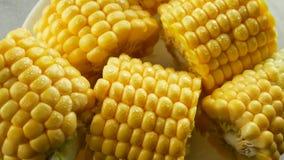 Junger Mais mit Wasser-Tropfen stock video footage