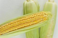 Junger Maiskolben auf weißem Hintergrund Stockbild