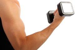 Junger Mann-Arm-Holding-Gewicht-Nahaufnahme Stockfotos