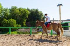 Junger Mann auf einem braun-blonden Pferd im Reiten Stockbild