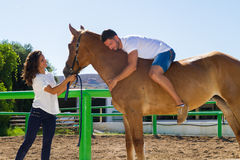 Junger Mann auf einem braunen Pferd ohne Sattel Stockbilder