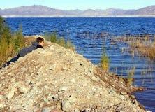 Junger Mann in dem See Stockbilder