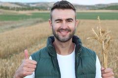 Junger Mann, der auf dem Weizengebiet steht und sich Daumen beim Blinzeln und Lächeln zeigt Lizenzfreies Stockbild