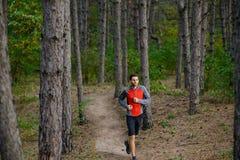 Junger Mann, der auf der Spur in der wilden Kiefer Forest Active Lifestyle läuft Stockbild