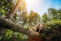 Junger Mann, der auf einem Baumstamm im Wald sitzt Stockbild