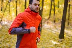 Junger Mann, der auf Sunny Trail in schönen Autumn Oak Forest läuft Stockfotos
