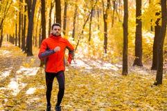 Junger Mann, der auf Sunny Trail in schönen Autumn Oak Forest läuft Stockbilder
