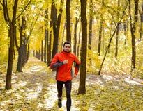 Junger Mann, der auf Sunny Trail in schönen Autumn Oak Forest läuft Stockbild