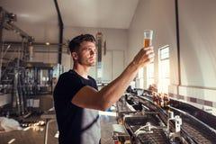 Junger Mann, der die Qualität des Handwerksbieres an der Brauerei überprüft lizenzfreies stockfoto