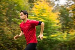 Junger Mann, der draußen in einen Stadtpark an einem Fall-/Herbsttag läuft Stockbild