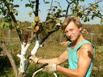 Junger Mann, der in einem Garten arbeitet lizenzfreies stockfoto