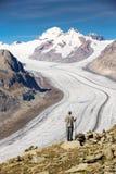 Junger Mann, der majestätische Ansicht zu Aletsch-Gletscher, das große betrachtet Lizenzfreie Stockbilder