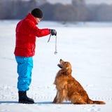 Junger Mann, der mit Hund spielt Stockbild