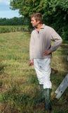 Junger Mann, der reife weiße Trauben auswählt stockfotos