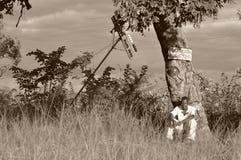 Junger Mann an einer Bushaltestelle in ländlichem Simbabwe, Afrika Stockbild
