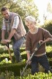 Junger Mann mit dem Kind, das im Garten arbeitet Stockfoto