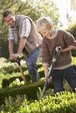 Junger Mann mit dem Kind, das im Garten arbeitet Stockfotografie
