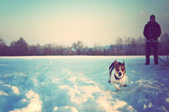 Junger Mann mit seinem laufenden Hund auf Schnee stockbild
