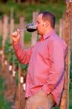 Junger Mann schmeckt Rotwein Stockbilder