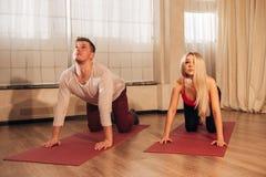 Junger Mann und die Frau, die Yoga tut, üben Katze aus Lizenzfreie Stockfotos