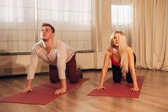 Junger Mann und die Frau, die Yoga tut, üben Katze aus Stockfotografie
