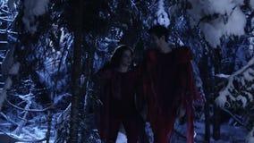 Junger Mann und Frau gehen langsam in Wald des verschneiten Winters nachts stilles stock video footage