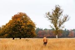Wanderndes Herbstfeld Stockfoto