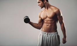 Junger muskulöser Mann, der mit Dummköpfen trainiert Stockfoto